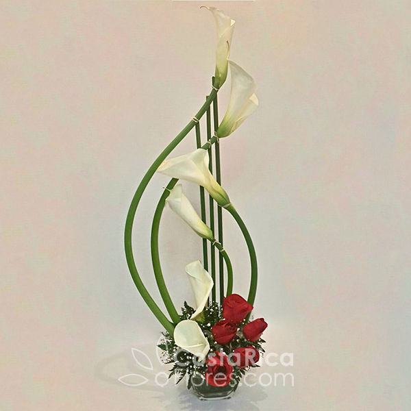 Calas Y Rosas Arreglo En Calas Y Rosas Cumpleaños