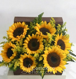 Sunflower wooden Chest