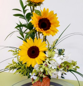 Sunflowers and Orchids